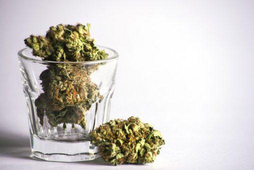 Cannabis stocks with stellar revenues 1