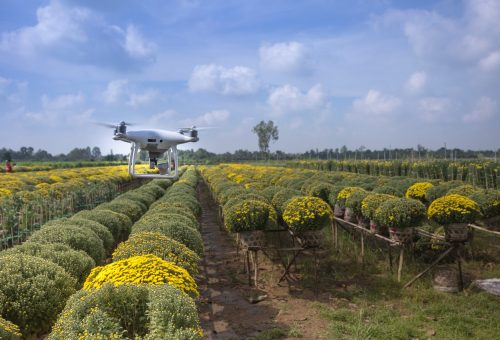 AgTech innovations are the future of agriculture